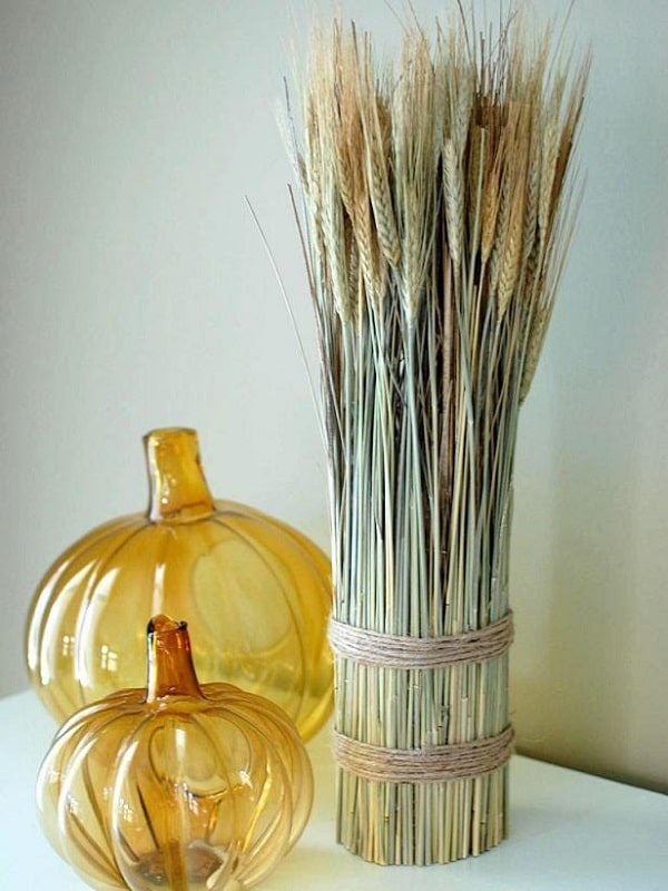 A wheat shelf corner made of a golden dried natural wheat sheaf bundle tied by string twine and placed beside two yellow glass pumpkin ornaments.
