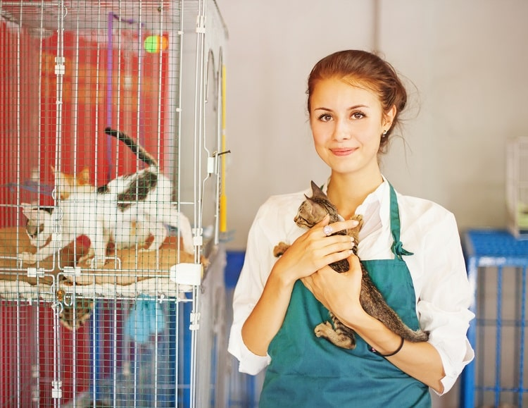 A college girl working at an animal shelter, holding a cat close to her chest.