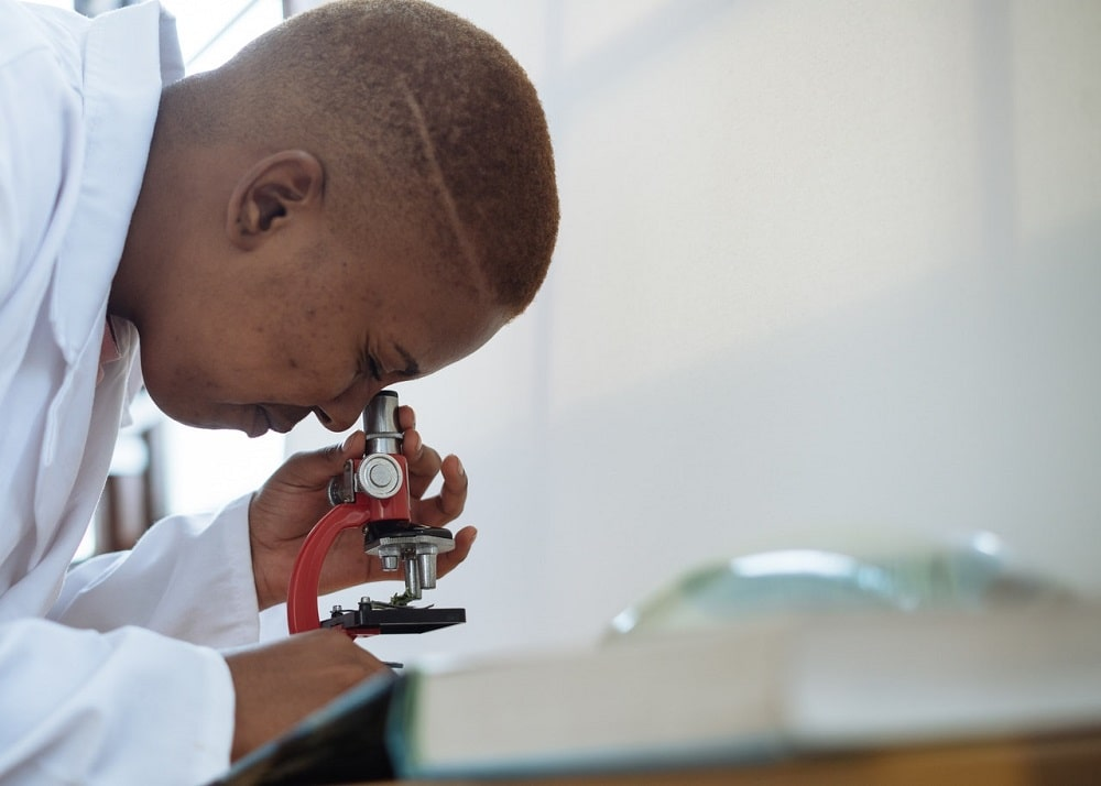 A S.T.E.M. graduate now with a career as a biologist, examining a specimen on a microscope at the lab.